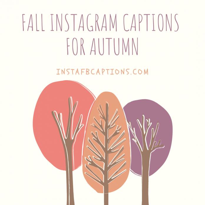 Fall Instagram Captions For Autum