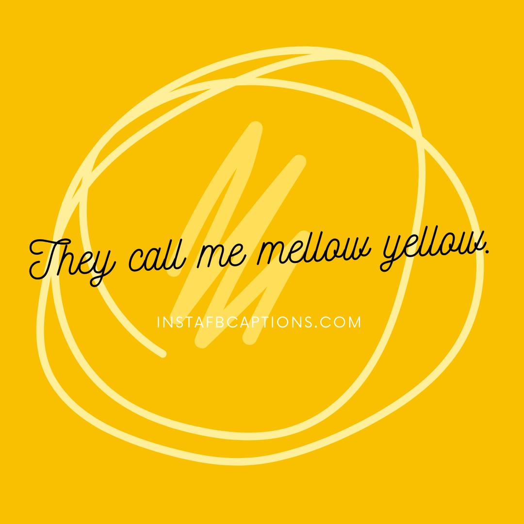 They Call Me Mellow Yellow. (1)  - They call me mellow yellow - HALDI Ceremony Captions for Instagram 2021