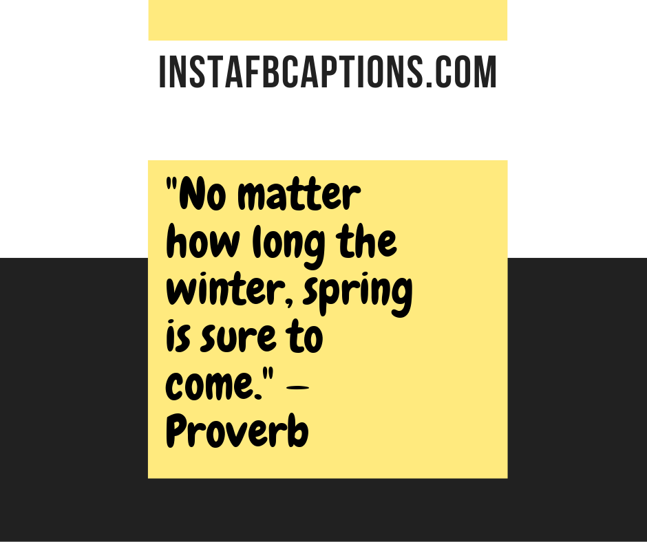 Welcome March Quotes  - No matter how long the winter spring is sure to come - 180+ MARCH Instagram Captions & Quotes 2021