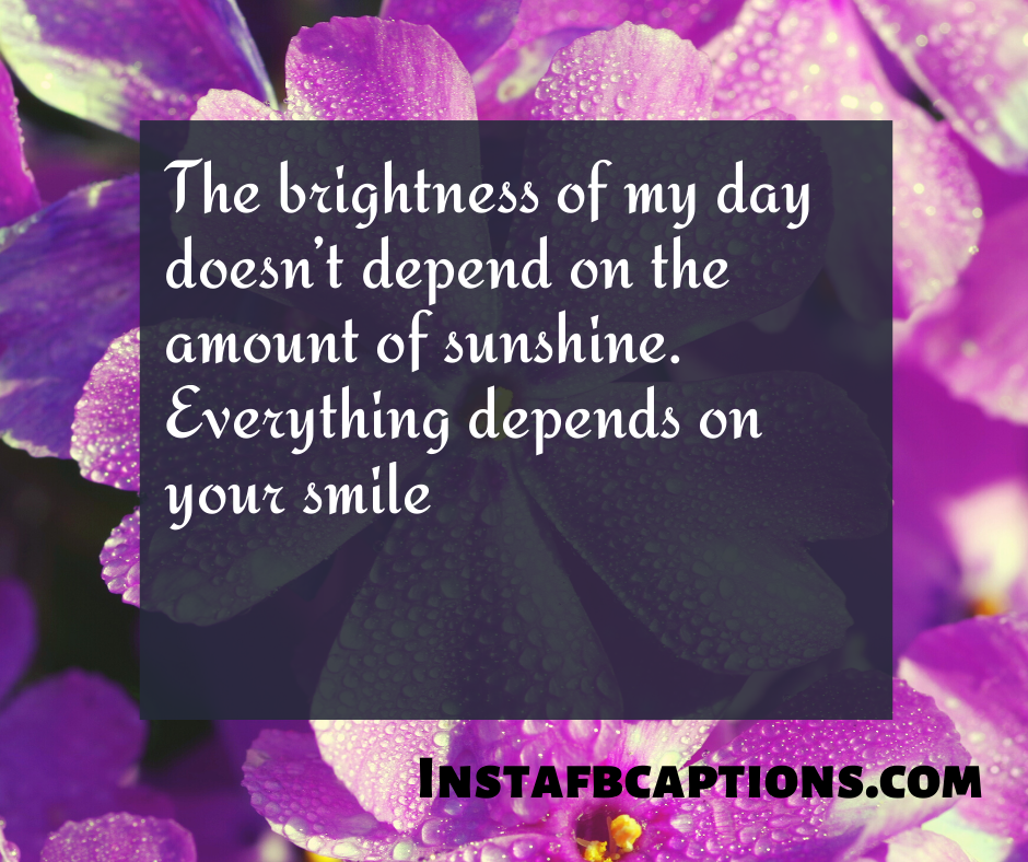 December Quotes for Calendar  - The brightness of my day doesn   t depend on the amount of sunshine - 180+ DECEMBER Instagram Captions & Quotes 2021