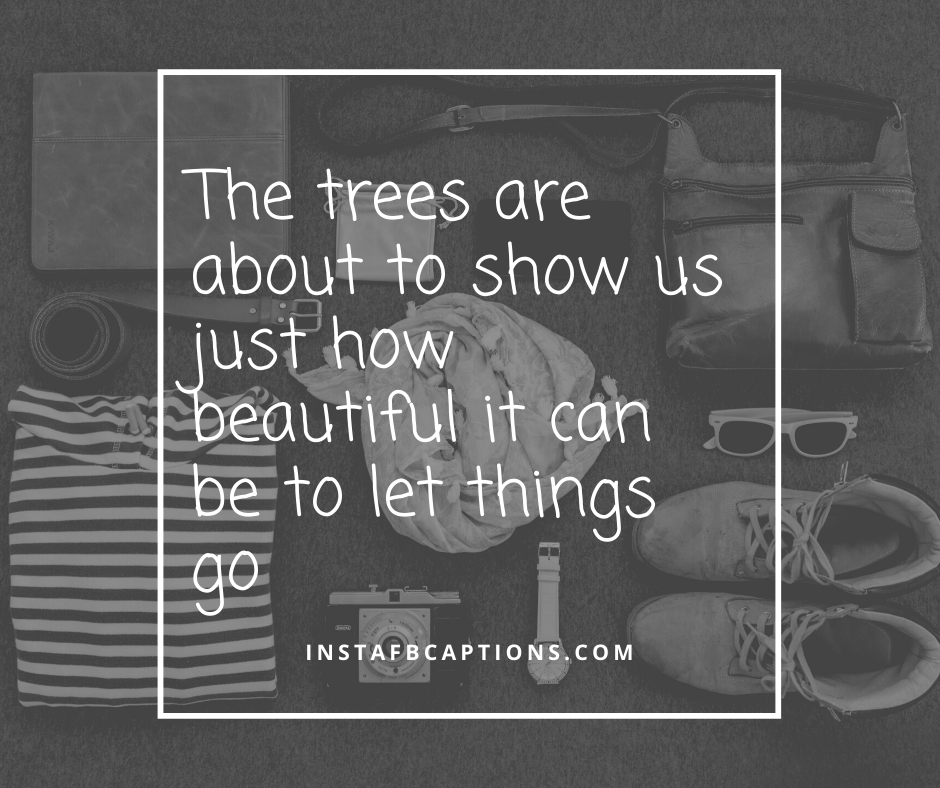 Short November Sayings  - The trees are about to show us just how beautiful it can be to let things go - NOVEMBER Instagram Captions, Quotes and Sayings 2021
