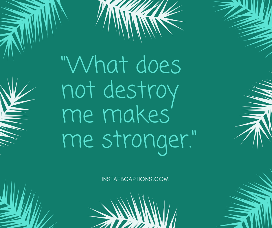 December 1st Quotes  - What does not destroy me makes me stronger - 180+ DECEMBER Instagram Captions & Quotes 2021