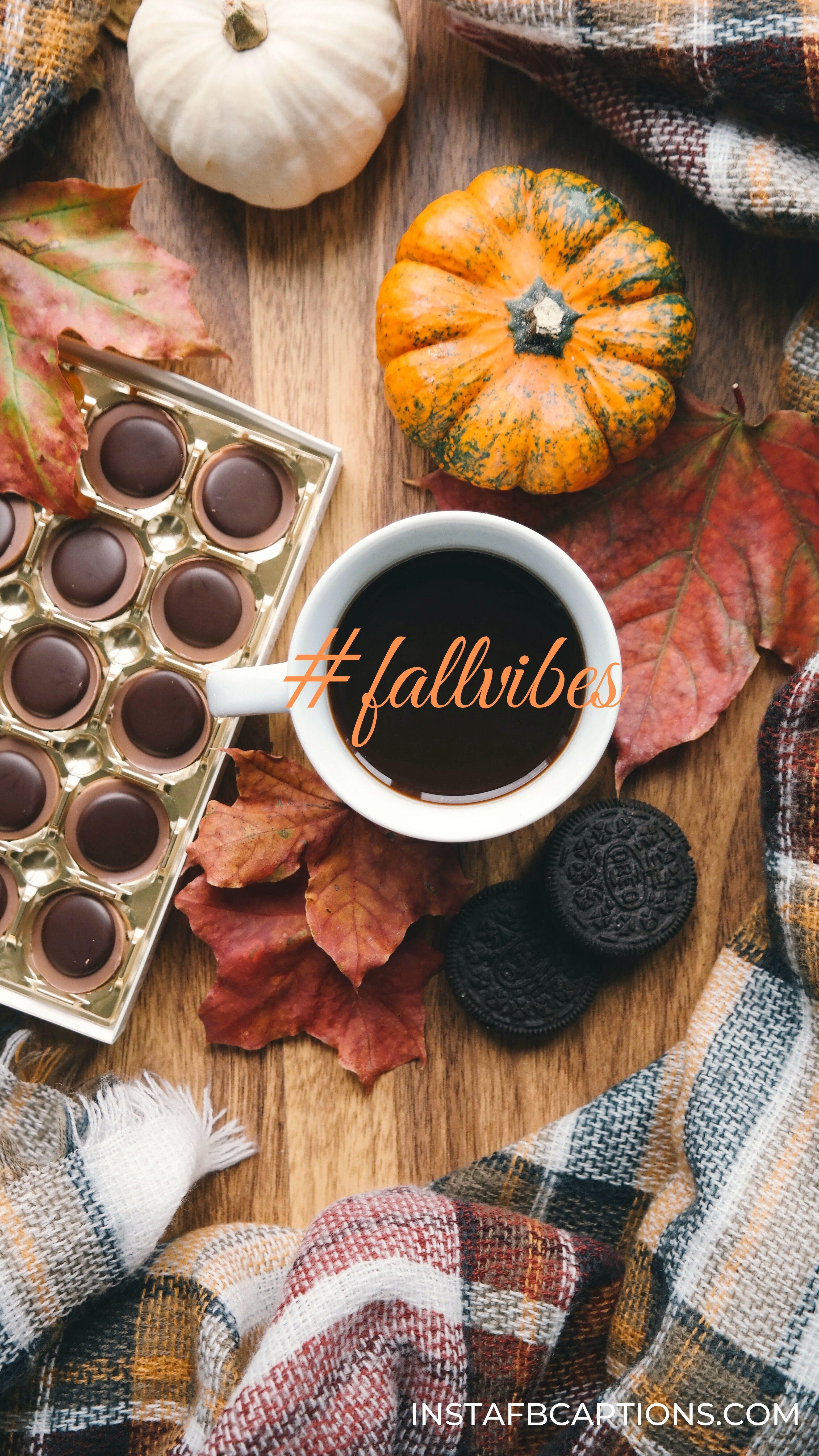 Hashtags For Autum  - Hashtags for Autumn - 120+ FALL Instagram Captions for AUTUMN 2021
