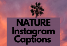 Nature Instagram Captions For 2021 (1)