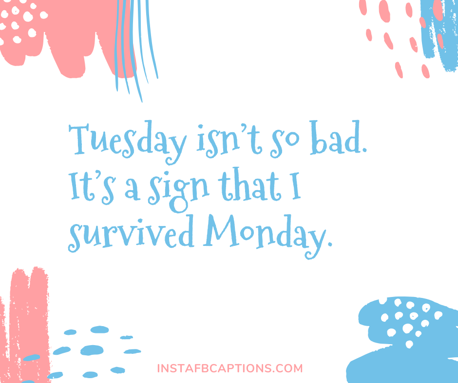 Perfect Tuesday Captions  - Perfect Tuesday Captions - 50+ TUESDAY Instagram Captions 2021