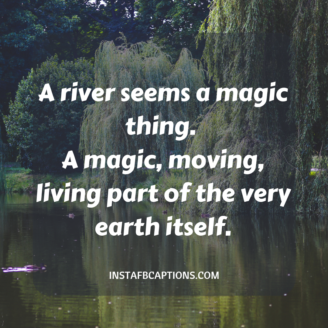 Beautiful River Quotes  - Beautiful River Quotes  - 113 River Instagram Captions for Pictures with Water in 2021