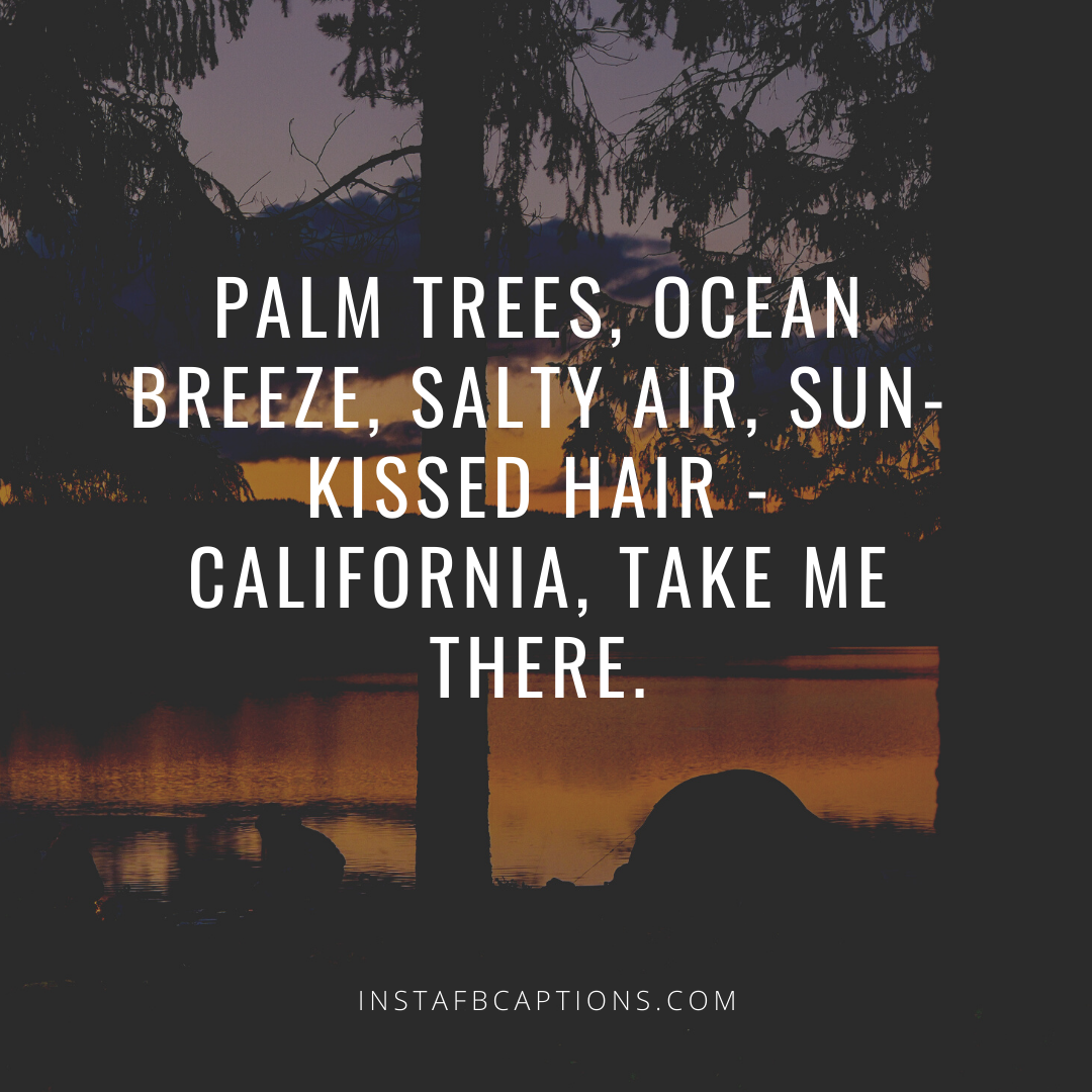 Quotes About California Nature   - Quotes about California Nature  - California Captions for Instagram:  A list of 49 Captivating California Quotes in 2021