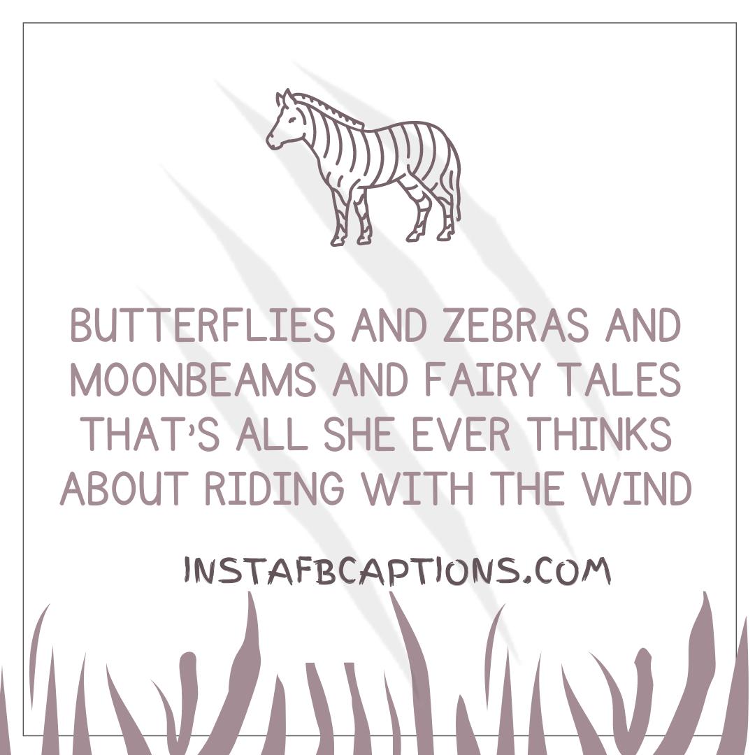 0001 4870662964 20210727 030834 0000  - 0001 4870662964 20210727 030834 0000 - 110+ Zebra Print Captions for Instagram Pictures in 2021