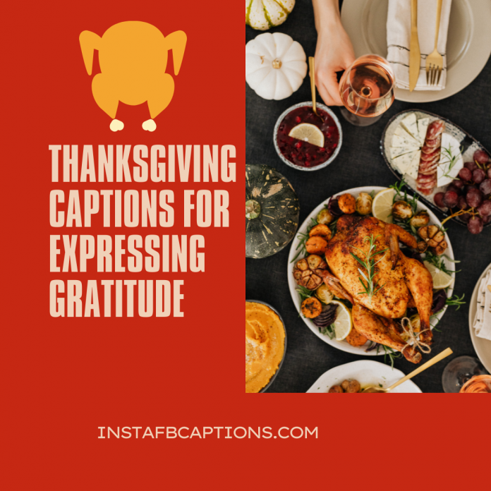 150+ Thanksgiving Captions For Expressing Gratitude In 2021