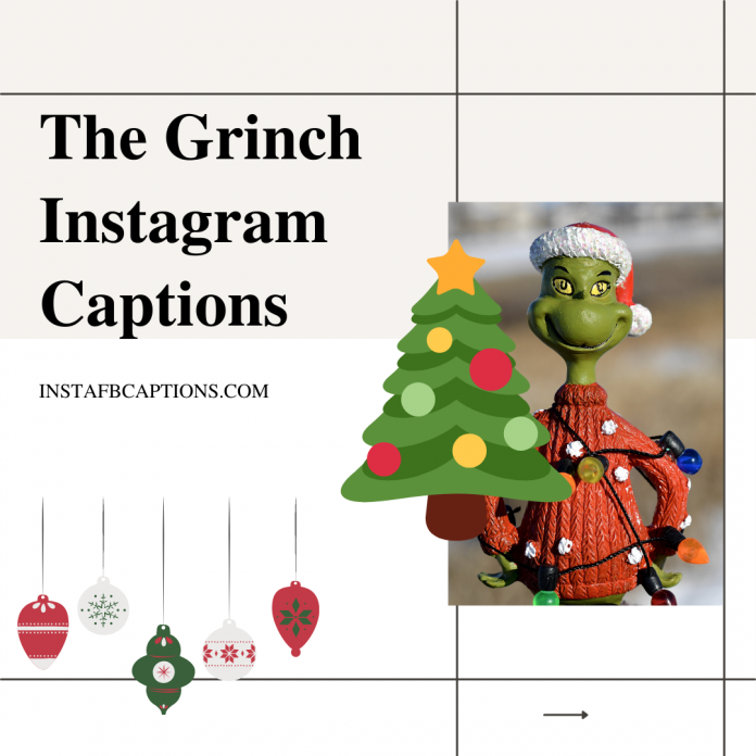 50+ The Grinch Instagram Captions For Movie Buffs In 2021