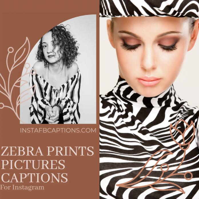 Zebra Print Picture Captions