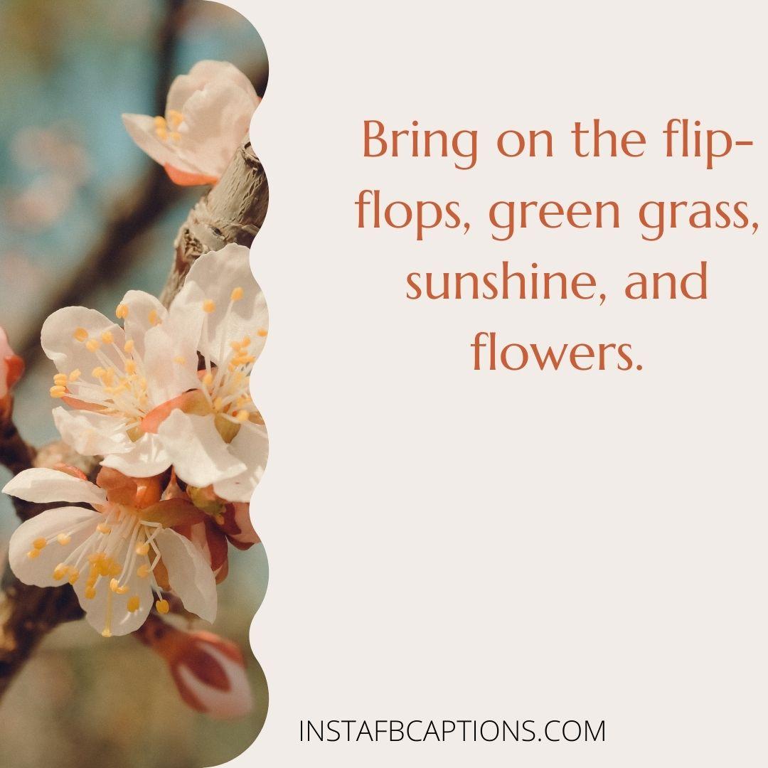 Amazing Spring Captions  - Amazing Spring Captions - APRIL Month Instagram Captions & Quotes in 2021