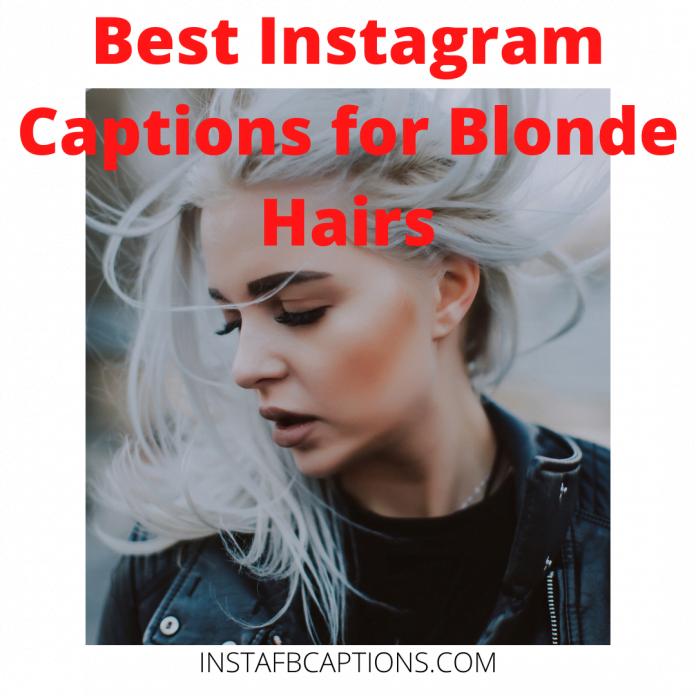Best Instagram Captions For Blonde Hair
