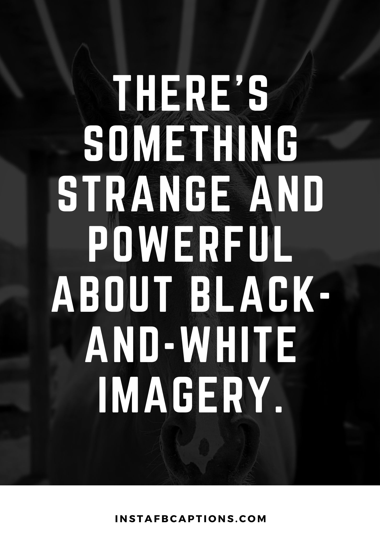 Fun Black And White Quotes In 2021  - Fun Black and White Quotes in 2021 - Black and White Instagram Photo Captions and Quotes in 2021