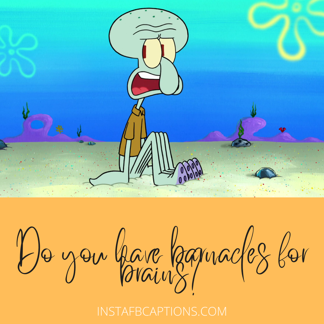 Handsome Squidward Tentacles Captions For Instagram  - Handsome Squidward Tentacles Captions for Instagram - Squidward Tentacles Instagram Captions & Quotes in 2021
