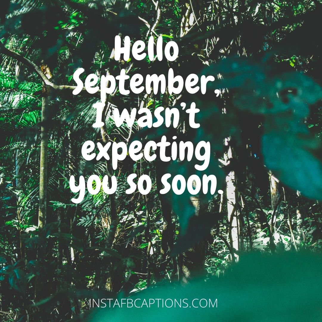 Quotes To Celebrate The Month Of September  - Quotes to Celebrate the Month of September - Hello SEPTEMBER Month Captions & Quotes for Instagram 2021