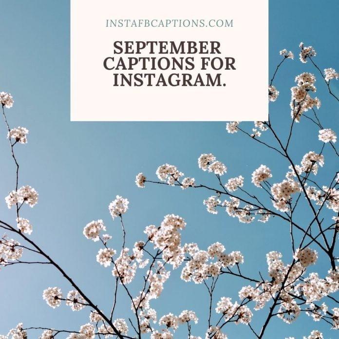 September Captions