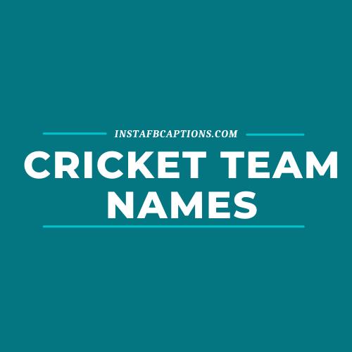 Cricket Team Names