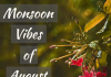 Monsoon Vibes Of August Captions  - Monsoon Vibes of August Captions  100x70 - Best Instagram Captions of All Time