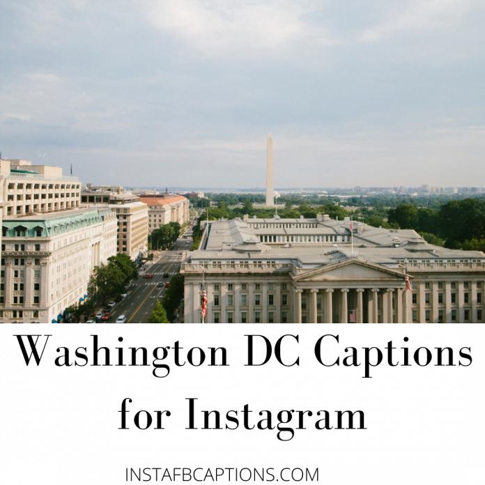 Washington Dc Captions For Instagram